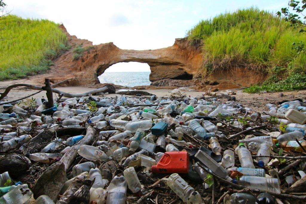 PET plastic waste that could be recycled